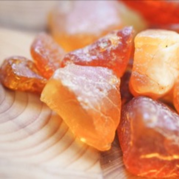 Amber is a Compelling and Intriguing Mineral Made of Fossilized Tree Resin