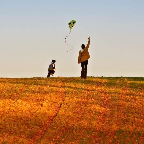 In My Family, Sundays Are Designated For Going Outside and Flying Kites