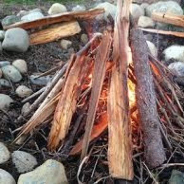 Camping Activities For Kids That Teach Perseverance And Survival Skills