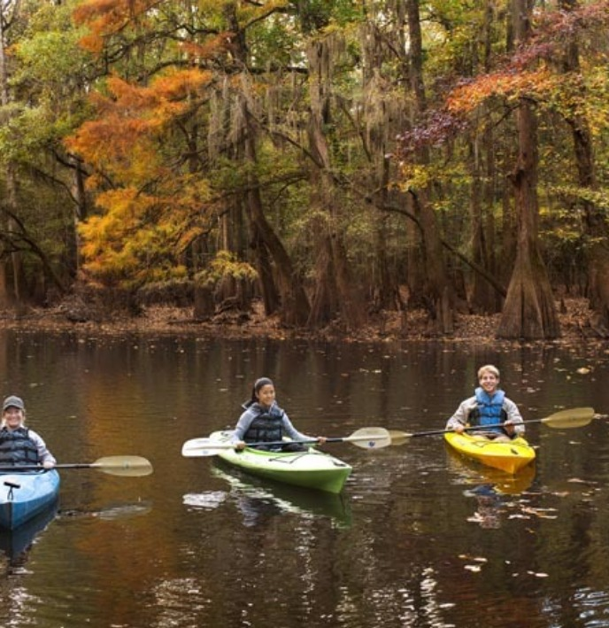 Kayaking in Congaree