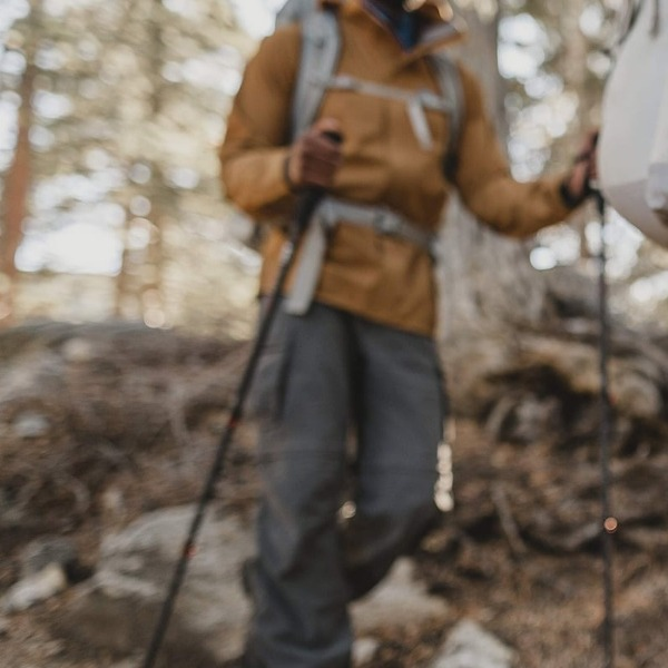 Are Hiking Poles Actually Better Than Your Trusty Walking Stick?