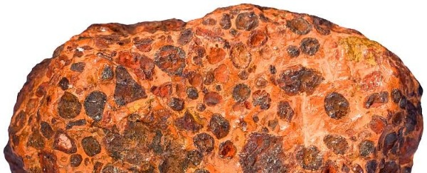 Bauxite Or Fruitcake/Other Seasonal Baked Confections?