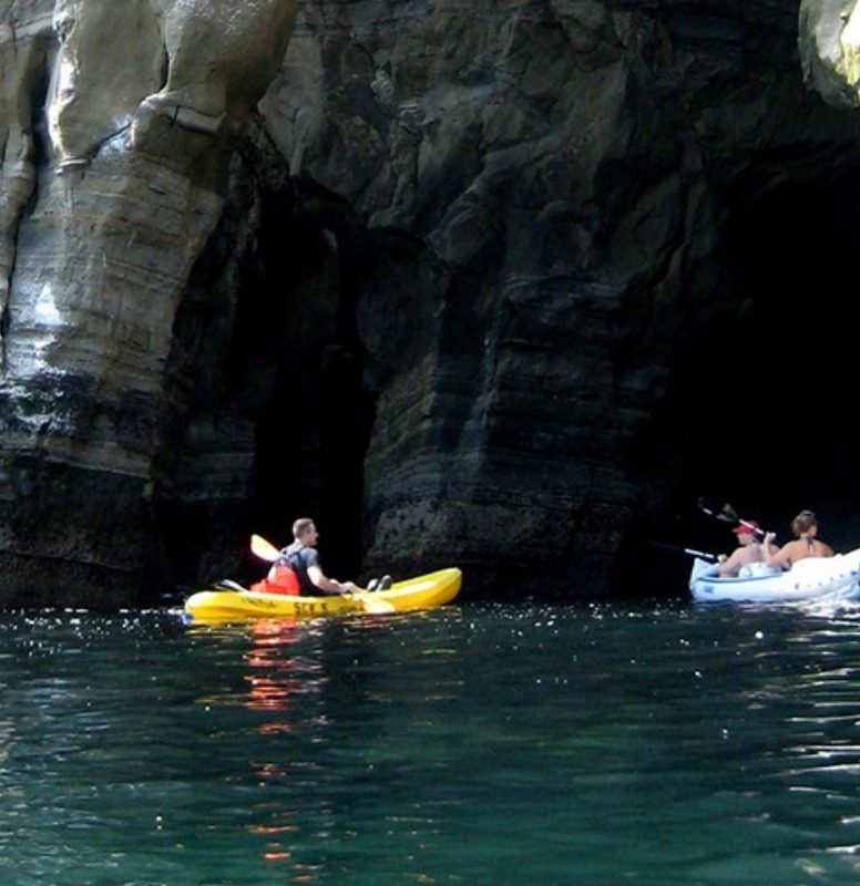 From our kayak trip down in La Jolla.