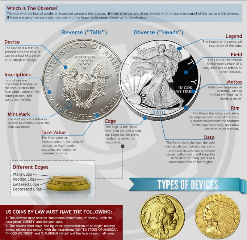 Coin anatomy infographic