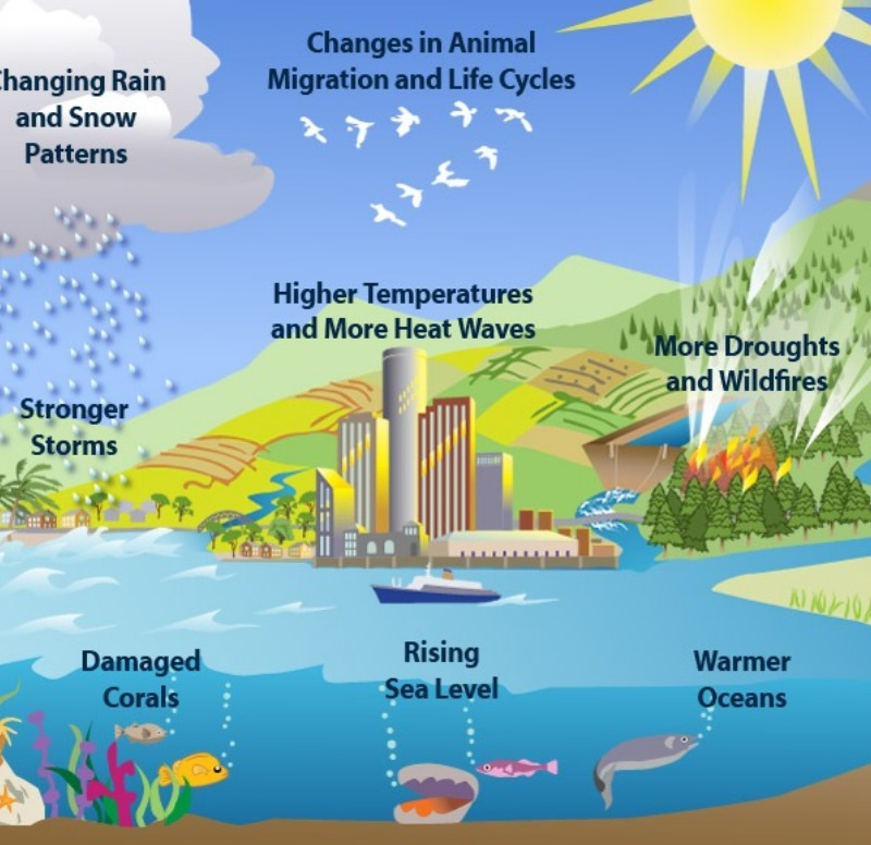 Climate Change Effects