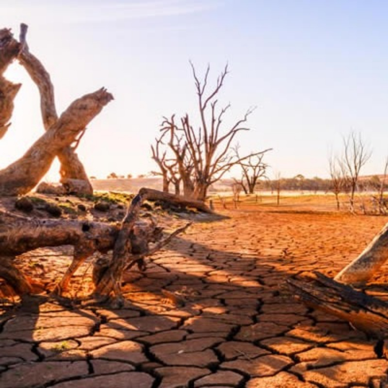 Severe droughts? Check.