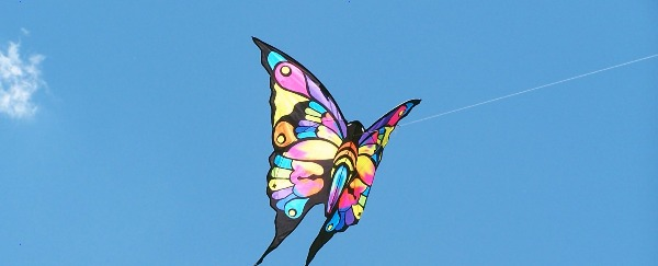 You And Your Kids Can Both Feel Like Kids With Children's Kites