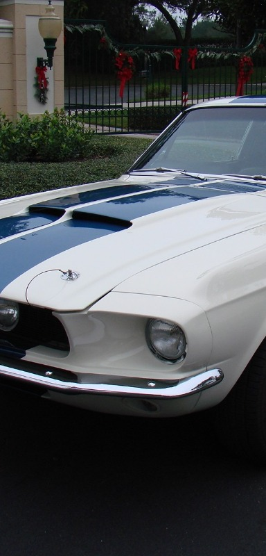 The Shelby racing stripes are a nice choice for a classic car renovation