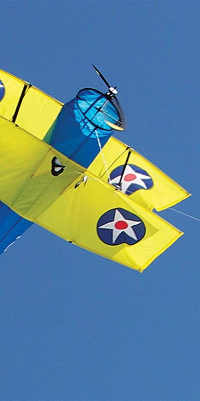 As you can see, airplane kites can be very colorful and lightweight