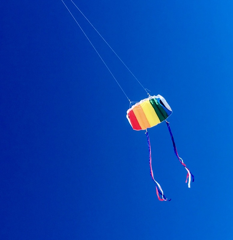 Basic kites are also very fun to fly around with the family